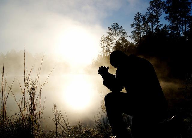 Las formas de la oración