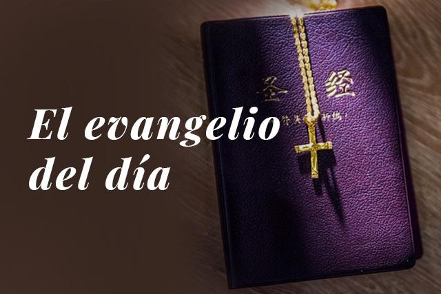 Evangelio del dia: Lectura del santo evangelio según san Lucas (1,46-56):
