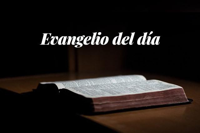 Evangelio del día: Lectura del santo evangelio según san Marcos (16,15-18):