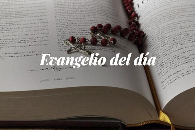 Evangelio del día: Lectura del santo evangelio según san Marcos (1,40-45):