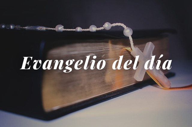 Evangelio del día: Lectura del santo evangelio según san Lucas 17, 26-37