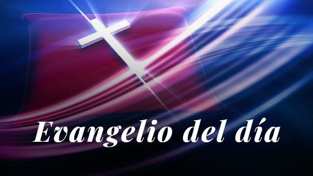 Evangelio del día: Lectura del santo evangelio según san Lucas 17, 7-10