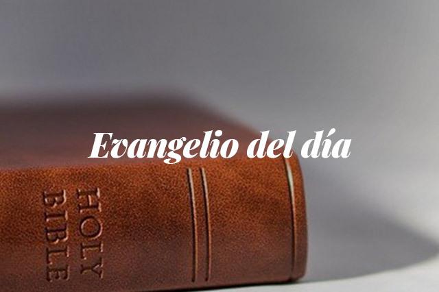 Evangelio del dia: lectura del santo evangelio según san Lucas (9,46-50)