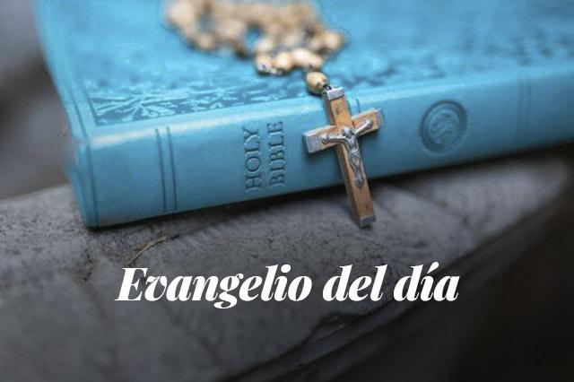 Evangelio del día: Lectura del santo evangelio según san Marcos (1,14-20):