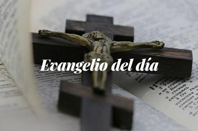 Evangelio del día: evangelio según Lucas 9, 18-22
