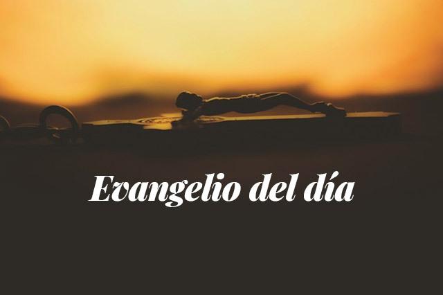 Evangelio del día: Lectura del santo evangelio según san Mateo (4,12-17.23-25):